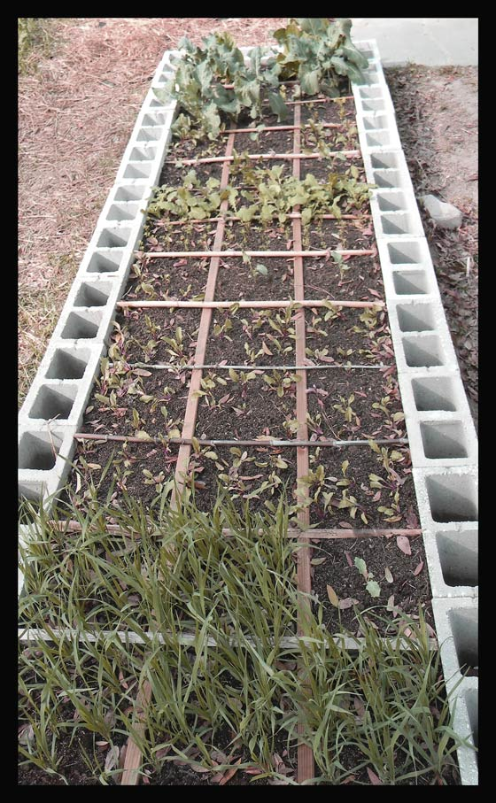 Square Foot Garden Planner, Square Foot Gardening Soil, Square Foot  Gardening