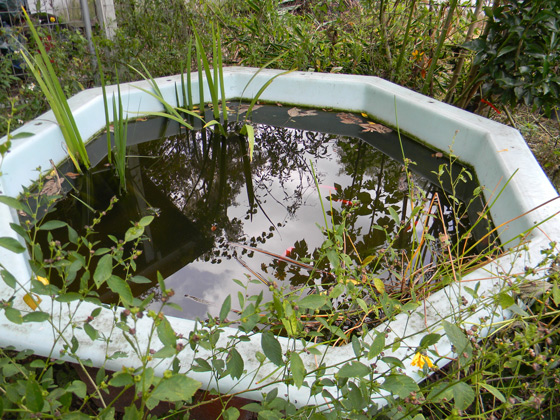 Three cheap ways to hoard water on your property p r e p for Cheap pond liner