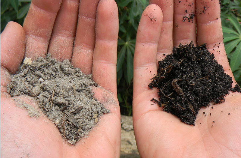 How to turn trash into soil for T and t soils