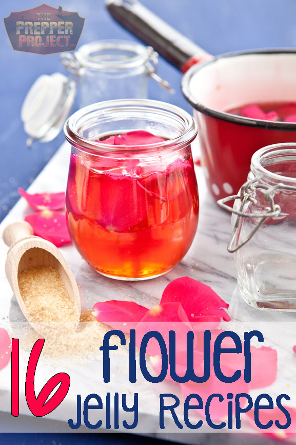 flower jelly, how to make jelly, survival gardening