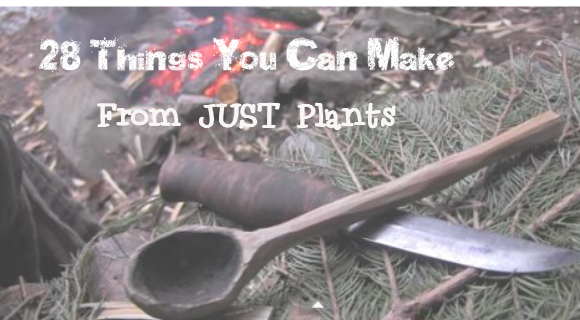 Things You Can Make From Plants For Survival