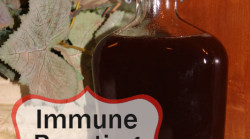 Immune Boosting Elderberry Syrup