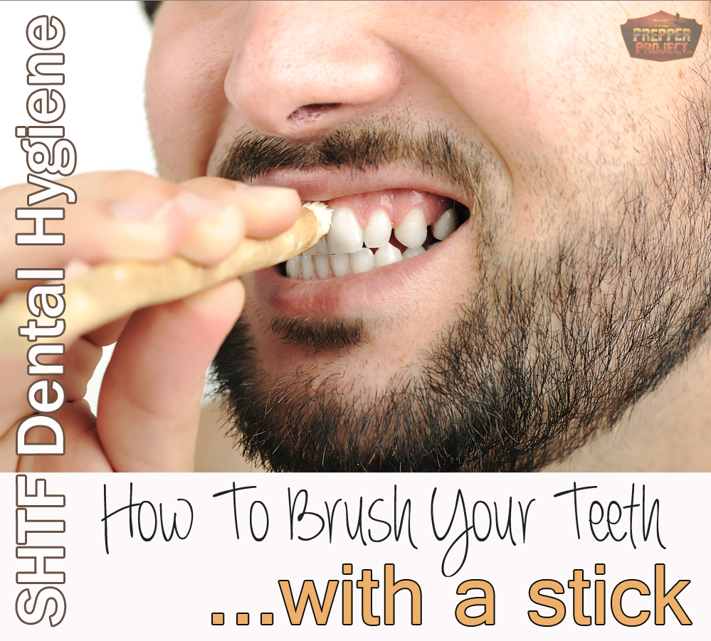 How To Brush Your Teeth With a Stick: SHTF Dental Hygiene