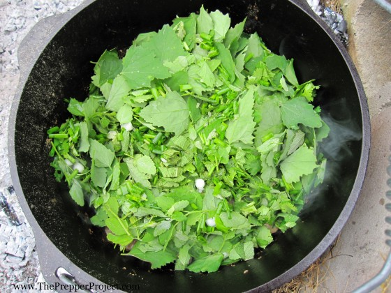 Foraged foods will taste great when cooked in a Dutch oven.