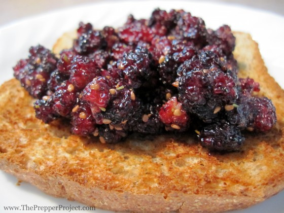 Mulberry jam on toast makes for good eating.