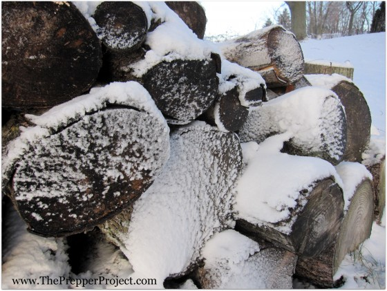 Don't forget that you will need to harvest firewood for the winter.