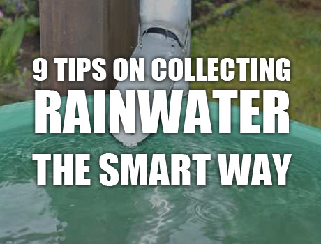 rain-water-collection